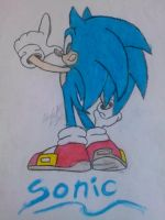 Sonic :Oil Pastel by horseylove91