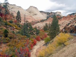 Colors at Zions National Park by ChickensAndDucks