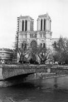 notre dame by poorreflection