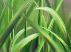Grass practice thingie by Froceit