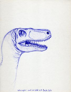 Velociraptor Sketch by Mad-Willy