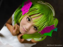 Shaymin ~ Cosplay by PS-XiaoFeng