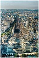 Paris view from Montparnasse 2 by superjuju29
