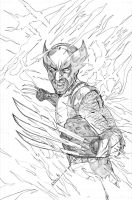 Wolverine - Pencils by teamzoth