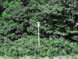 Street lamp in green by stock1-2-3