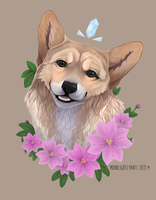Corgi by MoonlightLyanti