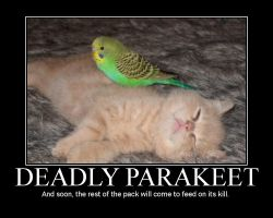 Deadly Parakeet by blasticore