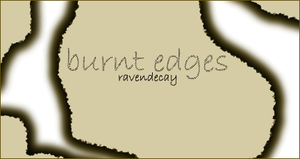 Burnt Edges by ravendecay