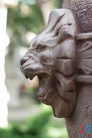Grin lion by sacso