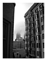 Chicago from outside our hotel by jaescott30