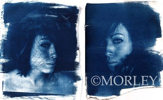 cyanotype diptych by kemosaab