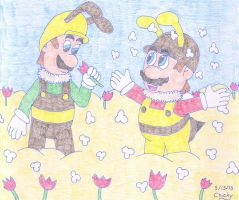 Bee Brothers and Flower Fields by N64chick