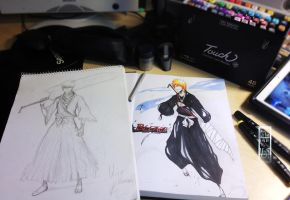 Ichigo - Traditional (2011-2012) by IFrAgMenTIx
