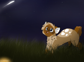 A Shooting Star :Request: by Snow-Berries
