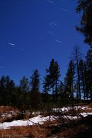 Meteor Shower by Corvidae65