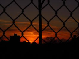 Caged. by POETRYTHROUGHLENS
