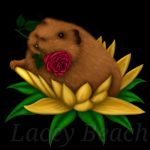 Cavy in Bloom by laceybeach