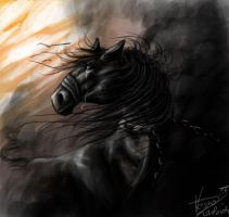 the last drop of light he'll ever see by SunnyFire