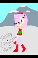 Merry Christmas Sonic by xXSonAmyFanXx