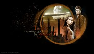 THE HOST STEPHANIE MEYER by VaL-DeViAnT