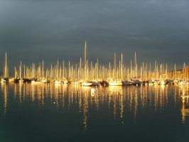 Golden light on boats by xanderking
