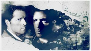 Supernatural Destiel by cwiny