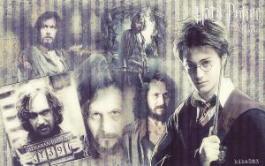 Harry Potter 3 by kika283
