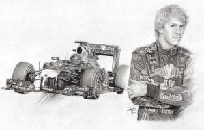 S. Vettel - F1 World Champion by hedspace77