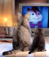 Two Cats watching AATC on TV by qalaxybutt