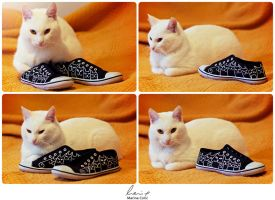 Cats Rule Sneakers by Stardust-Splendor