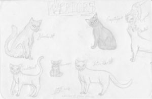 Warriors Character Sheet re-drawn. by Ivywhisker99