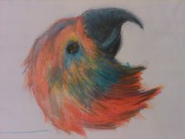 Colored Pencil Bird by mrreallydeviant87