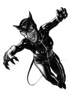 AH's Catwoman cover by sabbathsoul