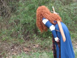 Merida 2 by LaJolieFilleStock