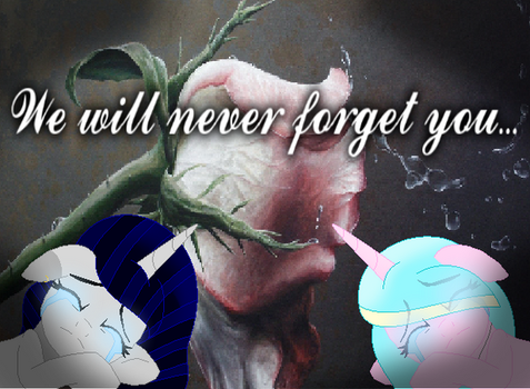 We will never forget you... (important in desc) by Kawaiirainbow220