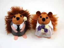 Mr and Mrs Hedgehog by The-House-of-Mouse