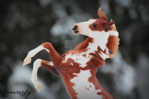 Fire and Snow by EquusInspiration