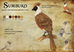Sumbuko Reference Sheet by Anatoliba