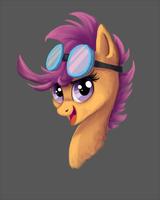 Scoots by Kallarmo