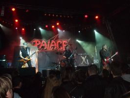 PALACE Budapest Barba Negra 2015-02-24 #1 by Soldier1166