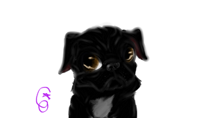 Dozer the pug (commission for my friend karen) by co-nay