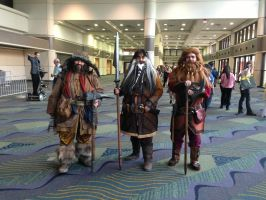 Favorites of MegaCon 2013: Bofur, Bifur, Gloin by cannibal-crunch