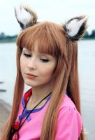 Spice and Wolf by ShlachinaPolina
