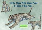 White Tiger PNG Stock Pack by Roys-Art