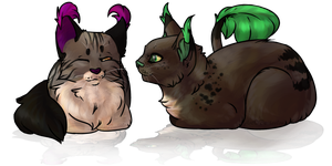 Cat Loaves by Baileelou