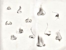 Sketching: noses by caterpill