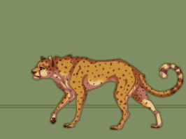 Cheetah by silver303
