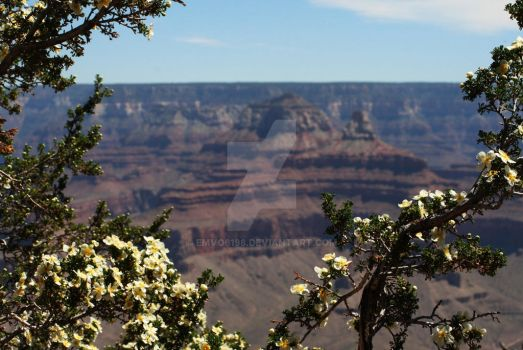 Grand Canyon 2 by emvo6198