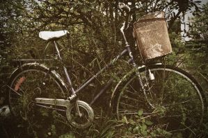 Bicycle, one with nature by isabelle-19