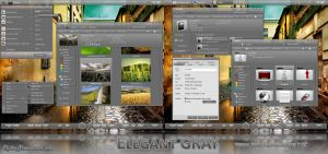 Elegant GRAY VS - Windows 7 RC by DjabyTown